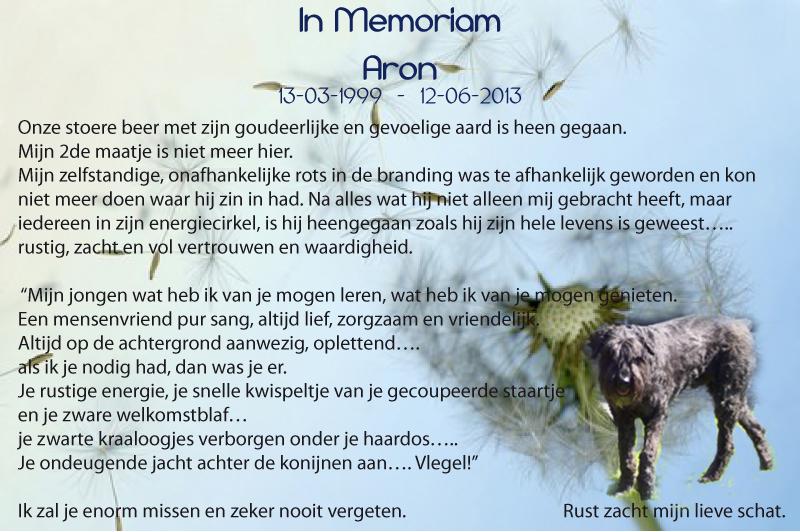 IN MEMORIAM-ARON